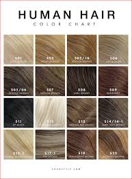 best professional hair color chart