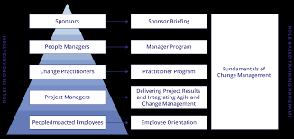core roles in change management