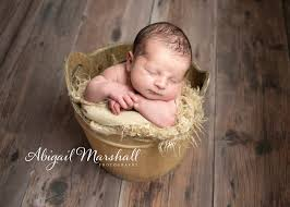 Abigail Marshall Photography - Posts | Facebook