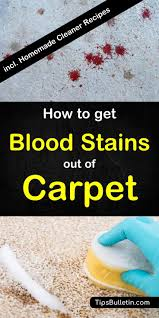 how to get blood sns out of carpet
