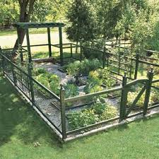 This 576 Square Foot Plot Produces Veggies All Summer For A Family Of Four With Plenty Left Over To Share Tidy Raised B Backyard Dream Garden Backyard Garden