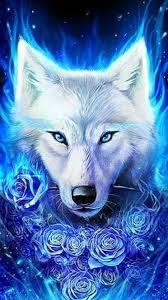 coolest wolf wallpapers wolf