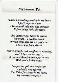 losing a pet means losing a best friend losing a pet dog poems