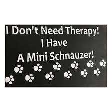 I Don T Need Therapy I Have A Mini Schnauzer Decal Lucky 7 Schnauzers