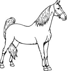 Tổng hợp các bức tranh tô màu con ngựa dễ thương dành tặng cho bé ...