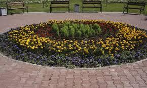 flower garden in the park benches stock