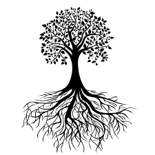"""alberodellavita925 on Twitter: """"L'Albero della Vita è un simbolo ..."""