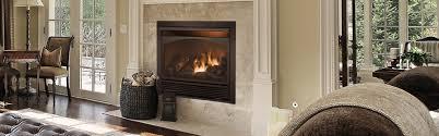 fireplace inserts ventless zero
