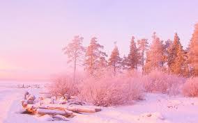 pink nature wallpaper 53 images