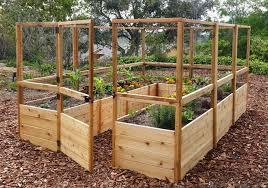 raised cedar garden bed with deer fence