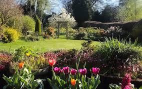 gardening apps to help your garden grow