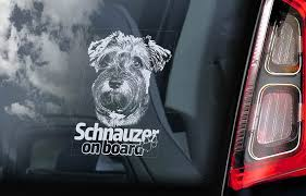 Schnauzer On Board Car Window Sticker Standard Miniature Etsy