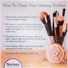 cleaning your brushes with norwex
