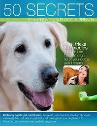 50 ways to improve your dog s breath