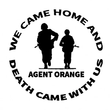 Orange Death Came With Us Window Decal Fashion Art Car Body Sticker Top Quality Waterproof Sun Protection Decor L003 Car Stickers Aliexpress