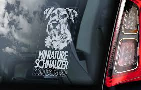 Miniature Schnauzer Car Sticker Zwerg Dog Window Sign Decal Gift Pet V05 Ebay