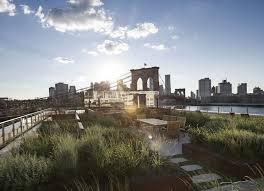 rooftop garden in brooklyn