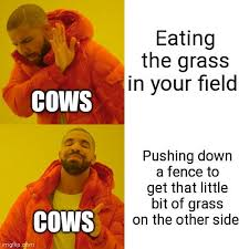 I Live On A Small Farm With Cows And I Made This Meme And Joined The Page To Share It With Y All Hope This Is Ok Farming