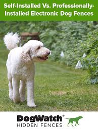 Self Installed Vs Professionally Installed Electronic Dog Fences Dog Fence Invisible Fence Dogs