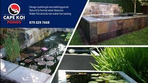 pond build renovation and maintenance