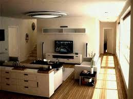 interior decoration of small living
