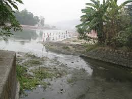 Ganga pollution unabated in Haridwar- Study by PSI