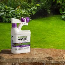 Amazon Com Liquid Fence Hg 1466x 146 Goose Repellent 1 Quart Hose End Sprayer Pack Of 1 Brown A Home Pest Repellents Garden Outdoor