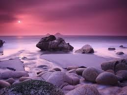 pink scenery wallpaper picserio