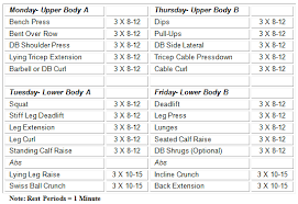 12 week strength workout for