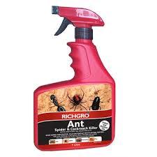29+ White Ant Baits Bunnings  Pics