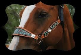 custom leather horse halters leather