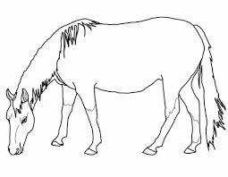 Grazend Amerikaans Quarter Paard Kleurplaat Gratis Kleurplaten