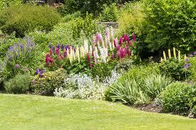 Garden Border Planting Ideas For Uk Gardens Upgardener
