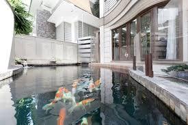 five principles for designing koi ponds