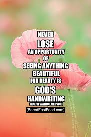 beauty is god s handwritting positive thought motivational