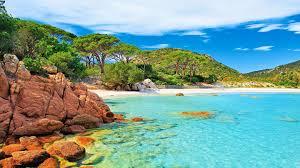 palombaggia beach in corsica island in
