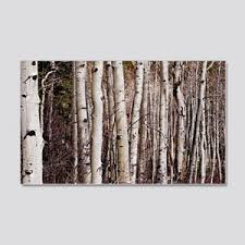 Aspen Tree Wall Decals Cafepress