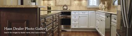 haas cabinet home