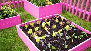 creative raised bed garden ideas yard