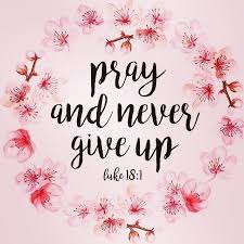 """bible quotes on instagram """"pray and never give up biblequote"""