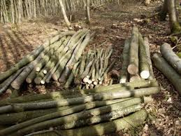 Posts Poles Rails Archives Coppice Products