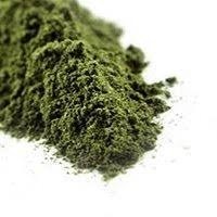 Nettle Leaf Powder • Herb Stomp