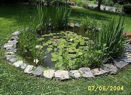 Build A Classroom Frog Pond Ponds Backyard Backyard Fences Pond Water Features