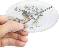 Amazon Com Cafepress Robin Bird Oval Sticker Oval Bumper Sticker Euro Oval Car Decal Home Kitchen