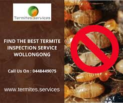 30+ Termite Inspection Service  Background