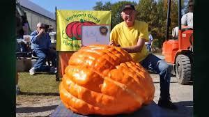 8 29 14 Growing A Giant Pumpkin On Uvm Extension S Across The Fence Pumpkin Giant Pumpkin Growing