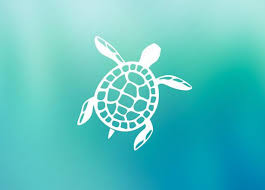 Sea Turtle Car Window Decal Car Window Sticker Vinyl Sticker Etsy