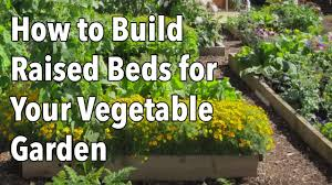raised beds for your vegetable garden