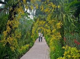 13 best botanical gardens in the world