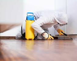 How to Choose the Right Pest Control Services? - IntelligentHQ